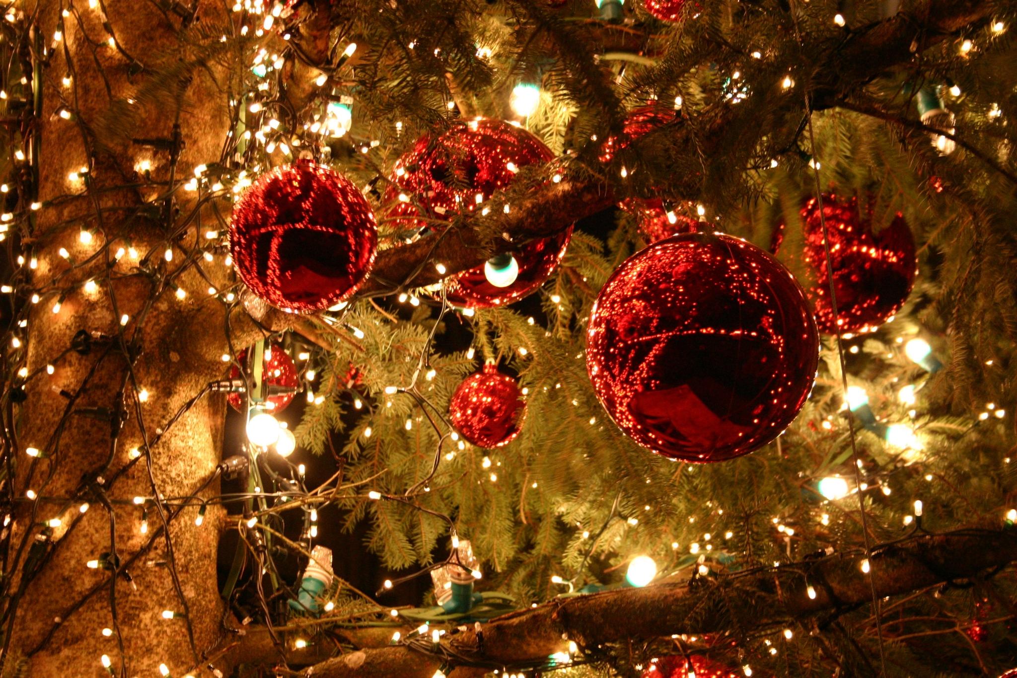 Vrolijk kerstfeest! (christmas tag)