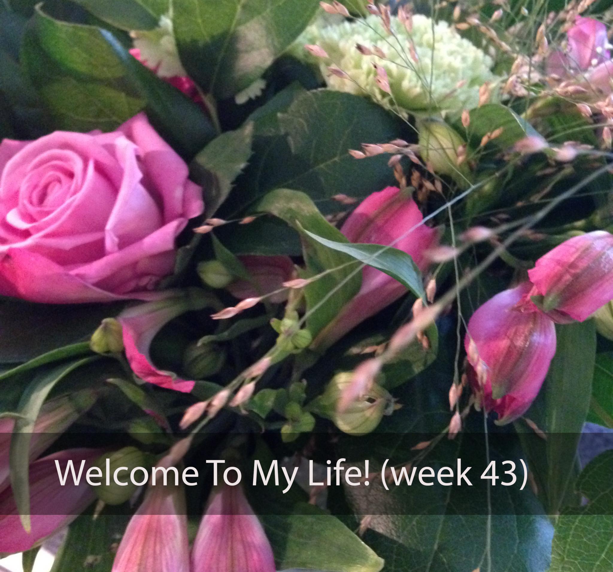 Persoonlijk: Welcome To My Life! (week 43)