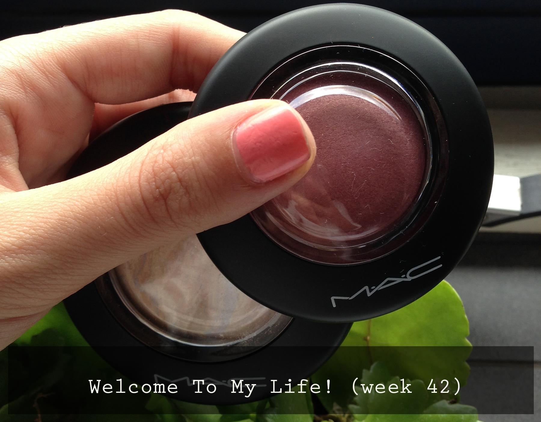 Persoonlijk: Welcome To My Life! (week 42)