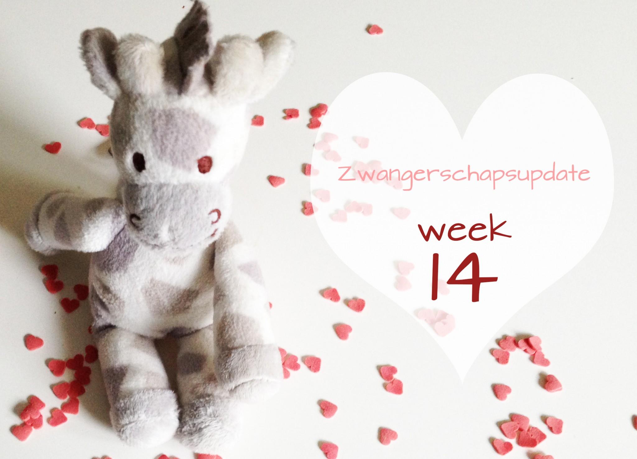 Zwangerschapsupdate #1 (14 weken)