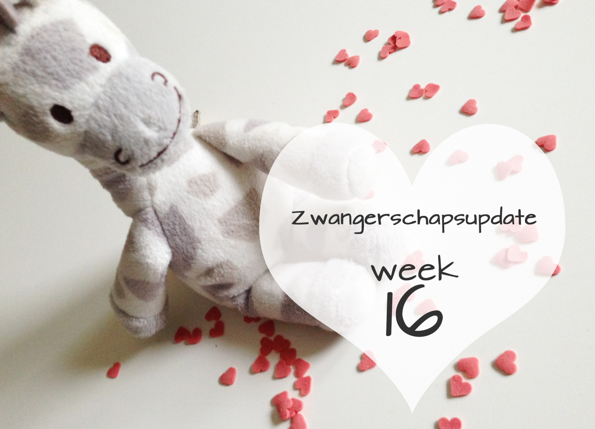 Zwangerschapsupdate #2 (16 weken)