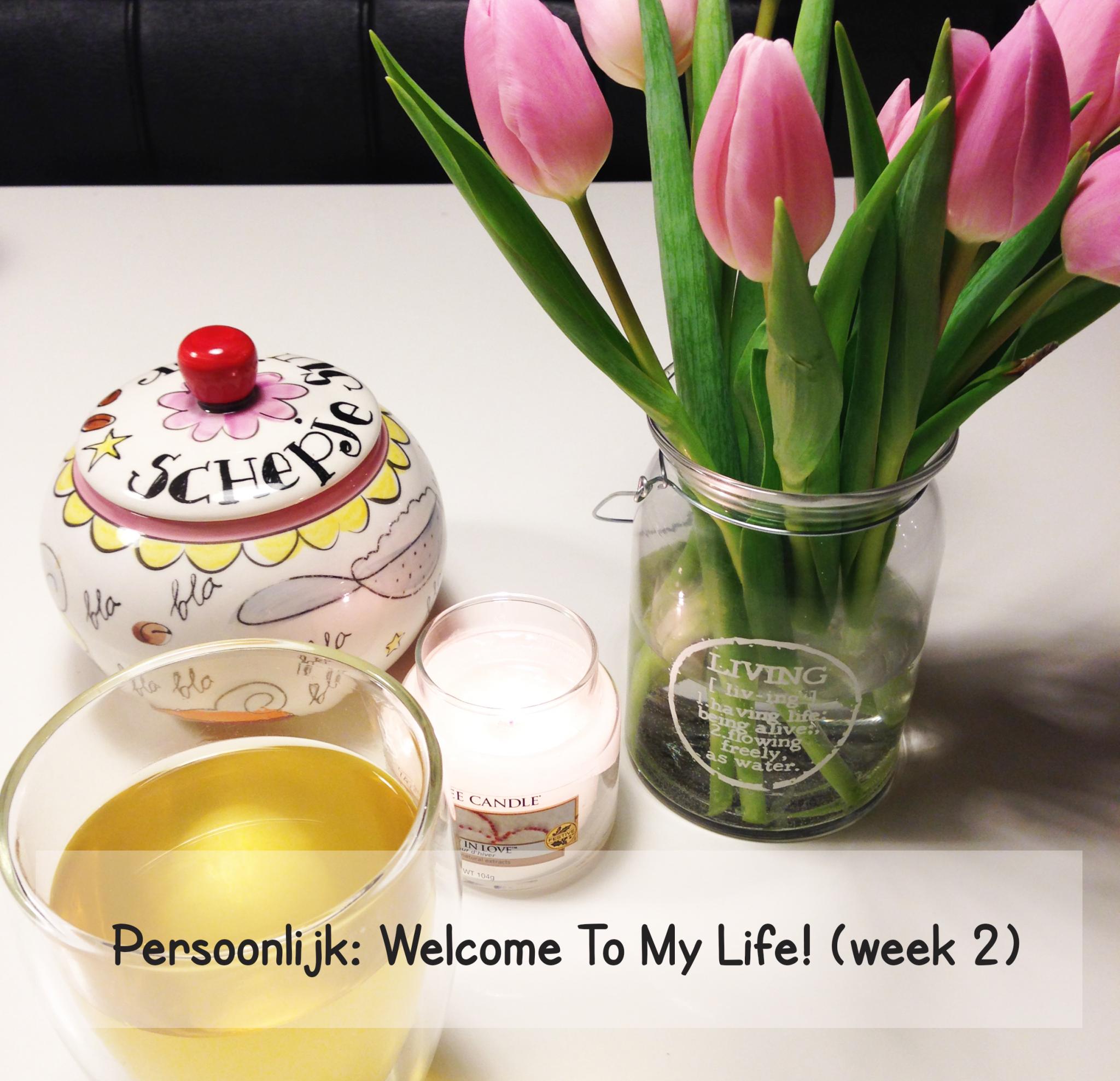 Persoonlijk: Welcome To My Life (week 2)