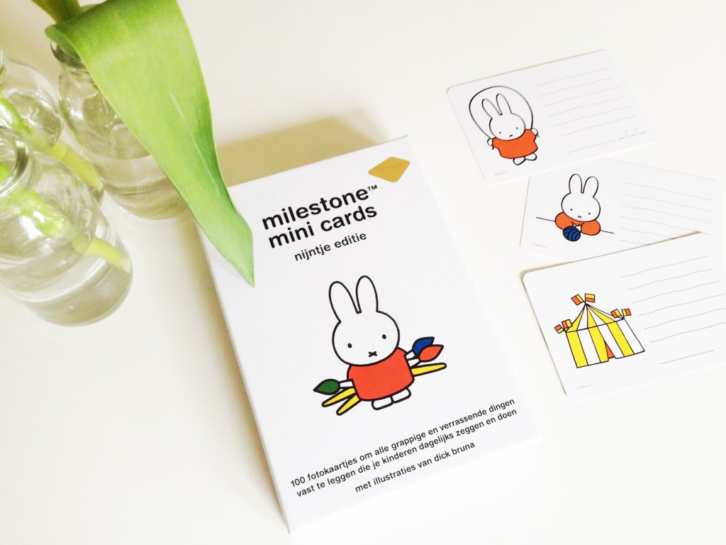 Milestone Mini Cards Nijntje Editie