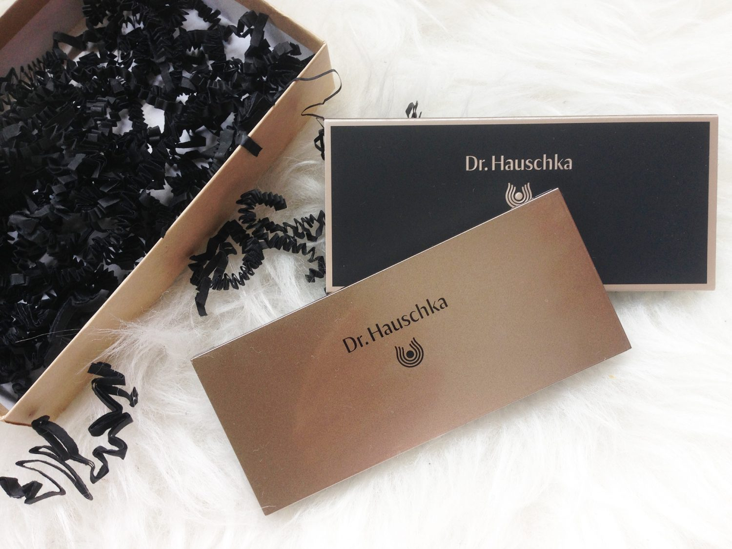 Dr. Hauschka Limited Edition Eyeshadow Palette & Look
