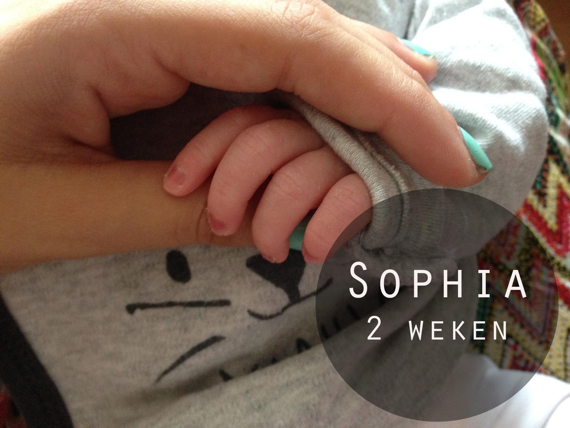 Sophia 2 weken! (persoonlijk)