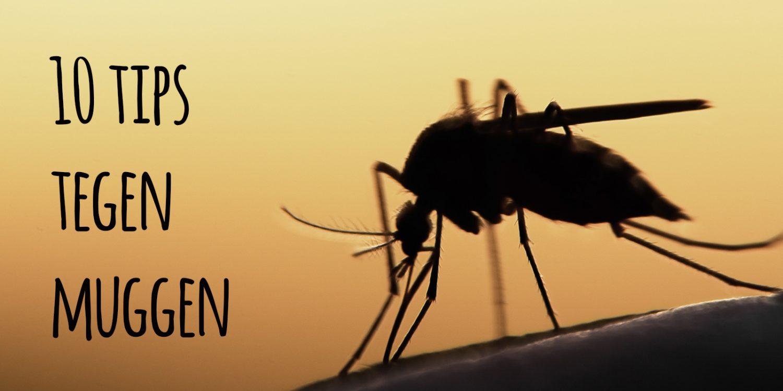 10 tips tegen muggen!