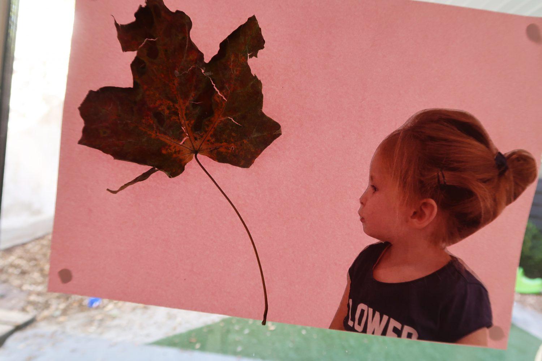 DIY: knutselen met herfstbladeren